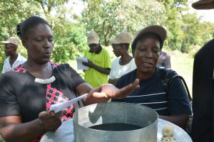The 21st Century Agricultural Cooperative: Increasing the Business Credibility of Smallholders